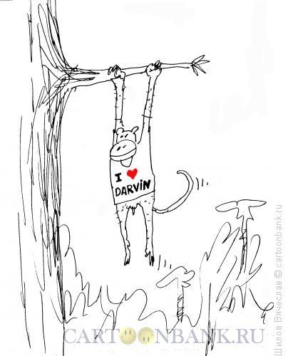 Карикатура: Дарвин, Шилов Вячеслав