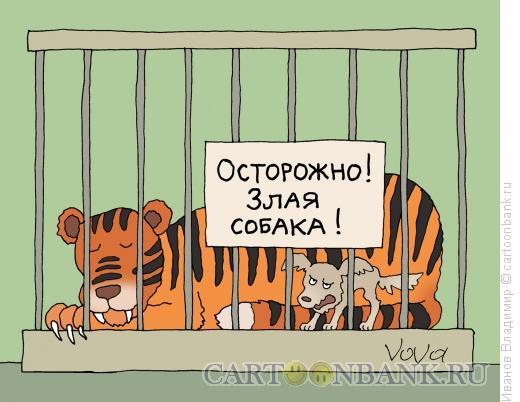 http://www.anekdot.ru/i/caricatures/normal/16/1/11/zlaya-sobaka.jpg