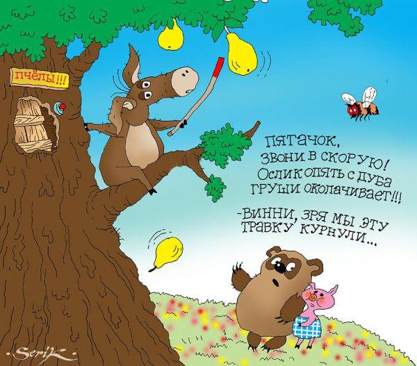 Карикатура: Расцветали яблоки на грушах :-), Кир Непьющий