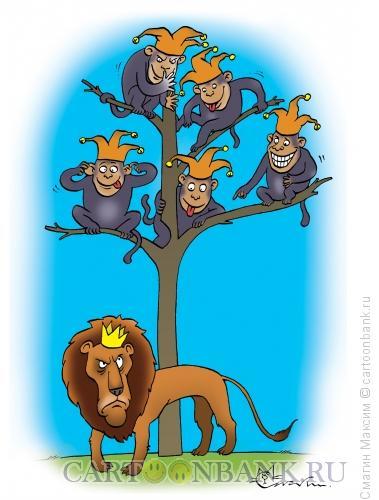 Карикатура: Сверху смешнее, Смагин Максим