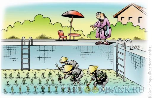 Карикатура: Бассейн, Кийко Игорь