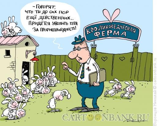 http://www.anekdot.ru/i/caricatures/normal/16/1/5/uvolnenie.jpg