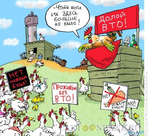 Карикатура: Куриный протест, Воронцов Николай