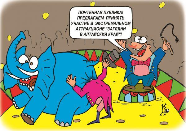 Карикатура: Загляни в Алтайский край, Ганов Константин