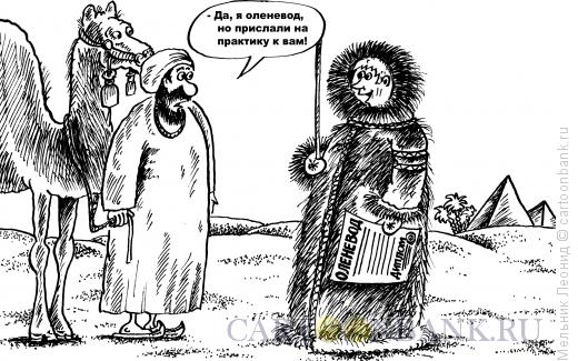 Карикатура: Практика, Мельник Леонид