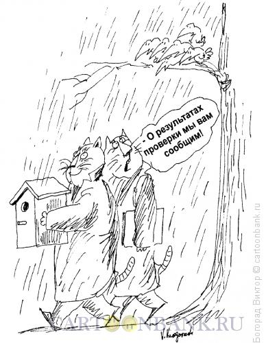 Карикатура: Проверка, Богорад Виктор