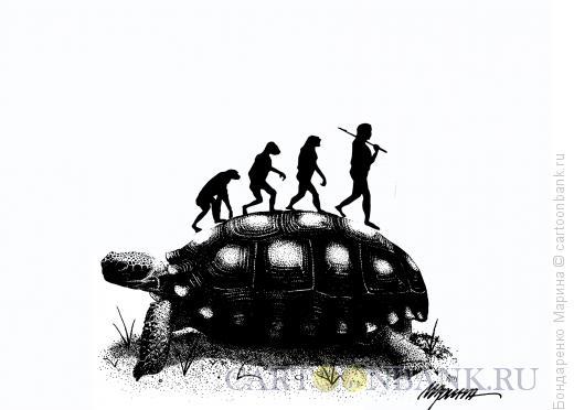 Карикатура: Эволюция на Черепахе, Бондаренко Марина