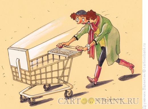Карикатура: ИНТЕРНЕТКОРЗИНА, Дружинин Валентин