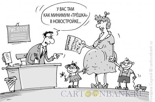 Карикатура: мамин капитал, Кокарев Сергей