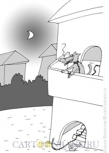 Карикатура: Богатая будка, Шилов Вячеслав