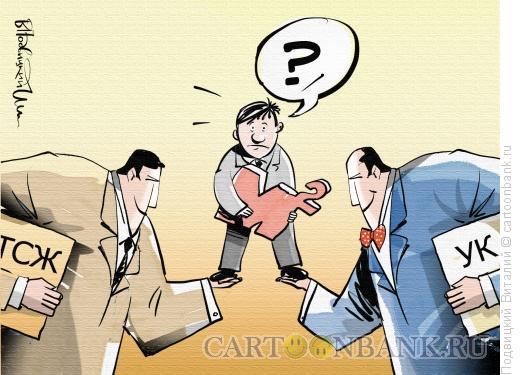 Карикатура: Тсж против УК, Подвицкий Виталий