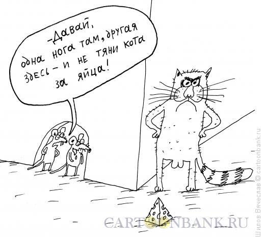 Карикатура: Мыши и сыр, Шилов Вячеслав
