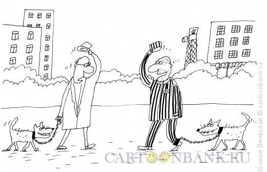 Карикатура: Привет-привет!, Шилов Вячеслав