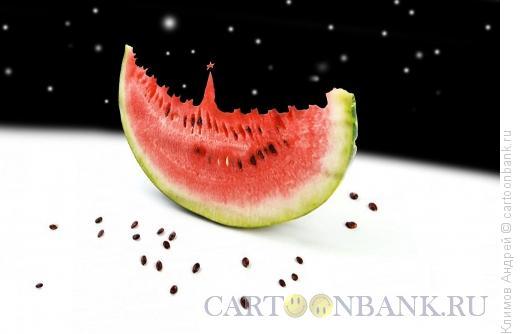 Карикатура: Sunflower seed, Климов Андрей