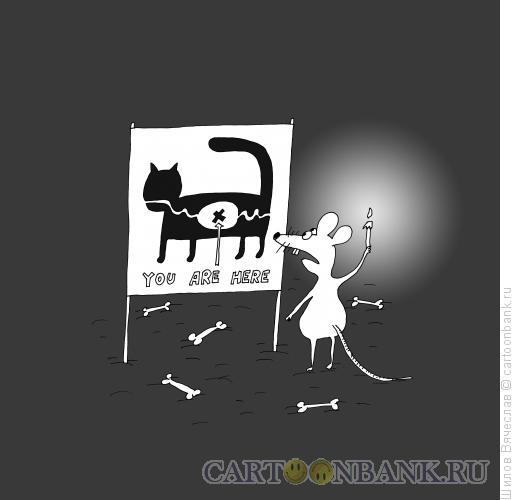 Карикатура: Местонахождение, Шилов Вячеслав