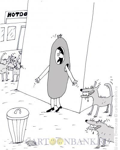 Карикатура: Хот-дог, Шилов Вячеслав