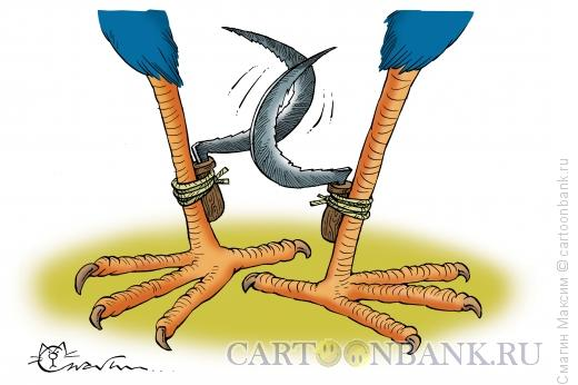 Карикатура: Шпоры, Смагин Максим