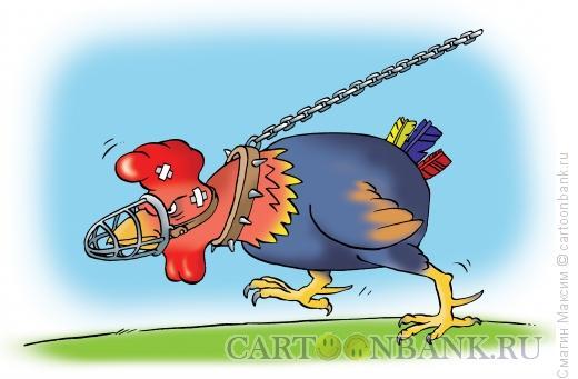 Карикатура: Бойцовый петух, Смагин Максим
