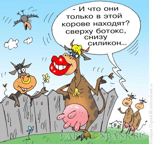 Карикатура: гламурная корова, Кокарев Сергей