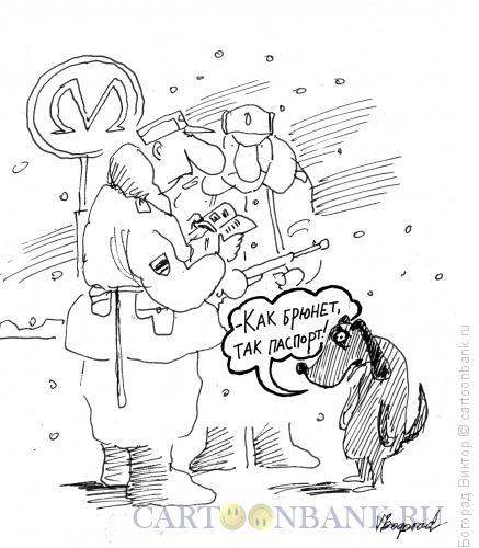 Карикатура: Проверка документов, Богорад Виктор