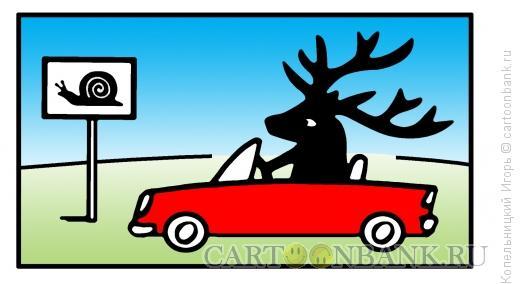 Карикатура: кто быстрее, Копельницкий Игорь