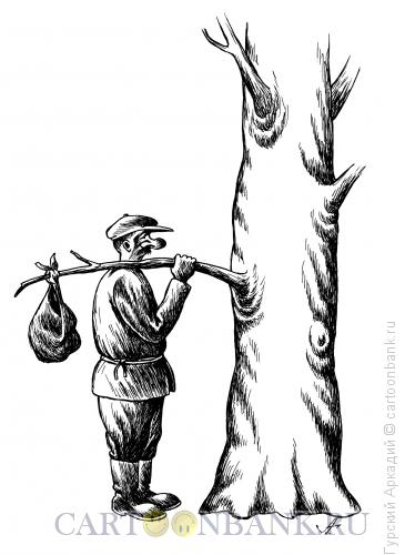 Карикатура: турист у дерева, Гурский Аркадий