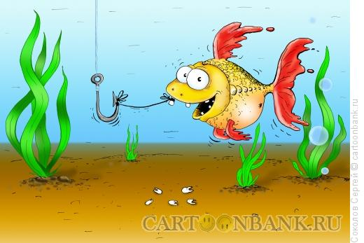 Карикатура: рыбобаловство 2, Соколов Сергей