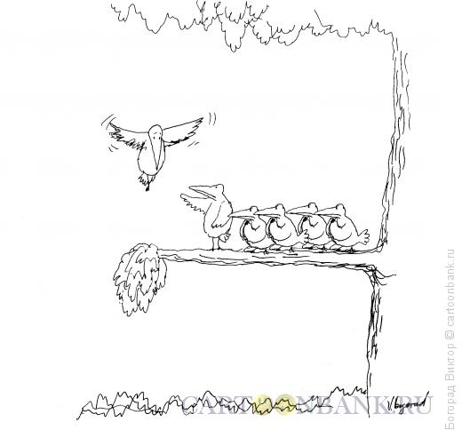 Карикатура: Секта, Богорад Виктор