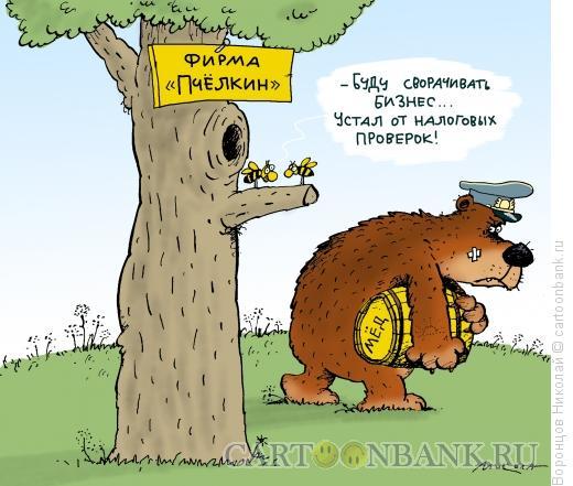 Карикатура: Налоговая проверка, Воронцов Николай