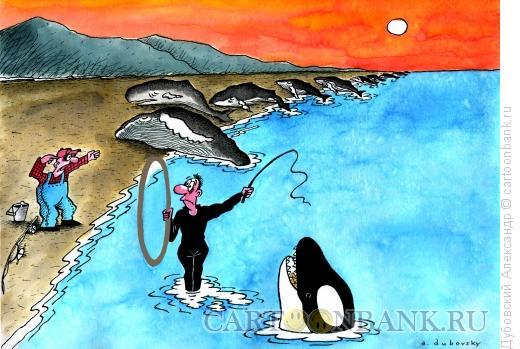 Карикатура: Дрессировщик, Дубовский Александр