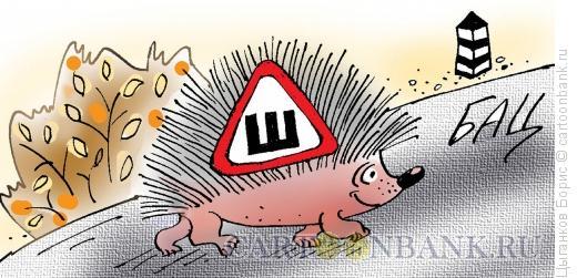 Карикатура: Шипованный ёжик, Цыганков Борис