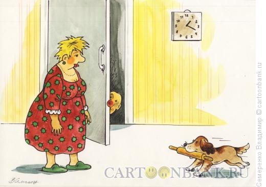 Карикатура: Верный помощник хозяйки, Семеренко Владимир