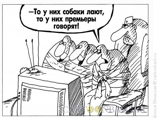 Карикатура: Психи и тв, Шилов Вячеслав