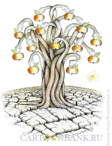 Карикатура: Выбор, или искшение, Шинкар Игорь