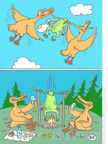 Карикатура: лягушка, Никитин Игорь