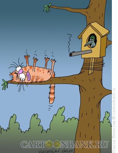 Карикатура: Защитник, Шилов Вячеслав