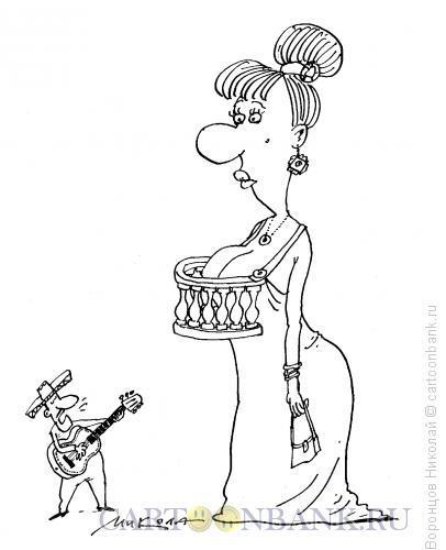 Карикатура: Серенада, Воронцов Николай
