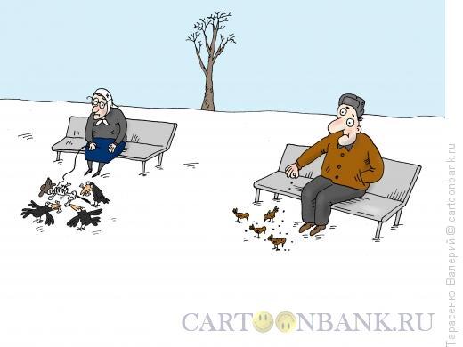 Карикатура: Корм для птиц, Тарасенко Валерий