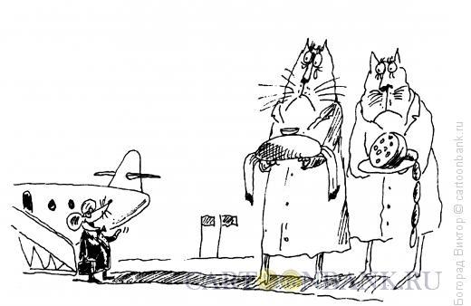 Карикатура: Встреча крысы, Богорад Виктор