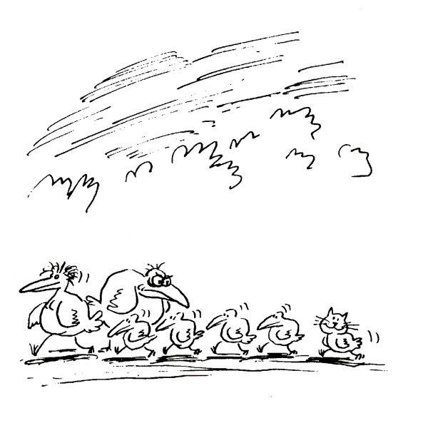 Карикатура: Кот, Виктор БОГОРАД