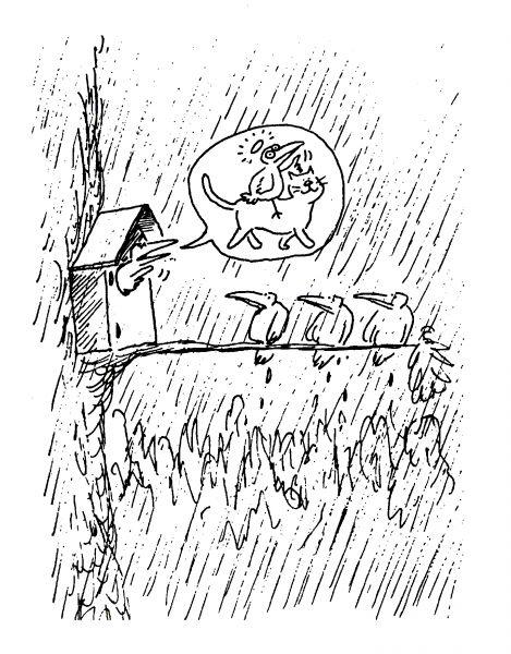 Карикатура: Птицы и коты, Виктор БОГОРАД