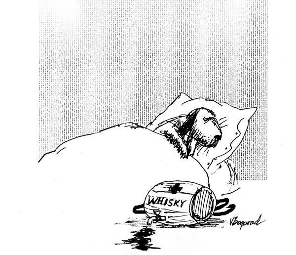 Карикатура: Сенбернар, Виктор БОГОРАД