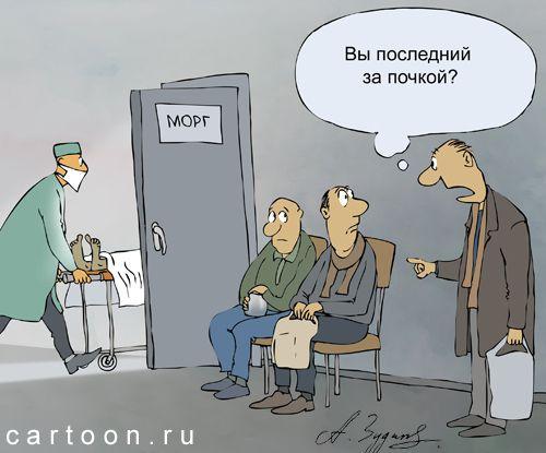 Карикатура: органы, Александр Зудин