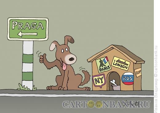 Карикатура: Пес путешественник, Иванов Владимир