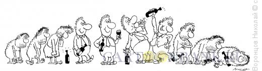 Карикатура: Эволюция алкоголика, Воронцов Николай
