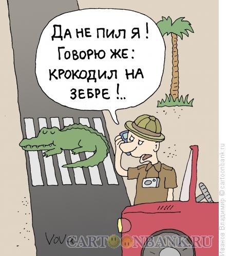 Карикатура: В африке, Иванов Владимир