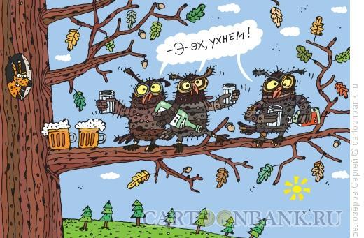 Карикатура: Совы, Белозёров Сергей