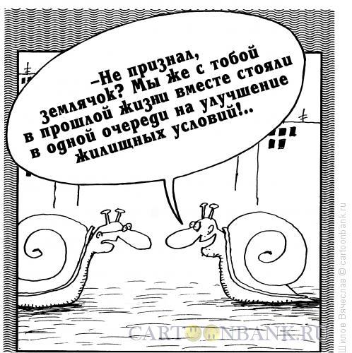 Карикатура: Квартирный вопрос, Шилов Вячеслав