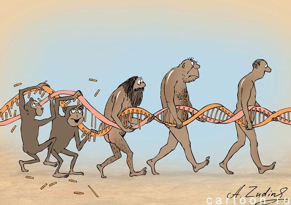 Карикатура: Репарация ДНК, Александр Зудин
