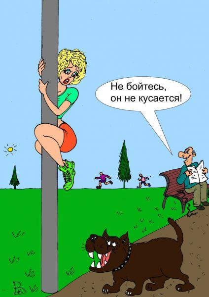 Карикатура: Весёлый собачник, Валерий Каненков